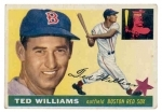 Ted  Williams (Boston Red Sox)