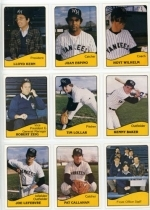 1979 West Haven Yankees Team Set (West Haven Yankees)