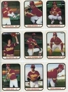 1981 Hawaii Islanders Team Set (Hawaii Islanders)