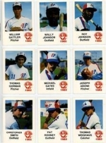 1982 Wichita Aeros Team Set (Wichita Aeros)