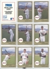 1988 Colorado Springs Sky Sox Team Set (Colorado Springs Sky Sox)