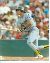 Jose Canseco Autographed 8 x 10 (Oakland Athletics)