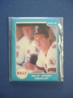 Wally Joyner Star Set (California Angels)